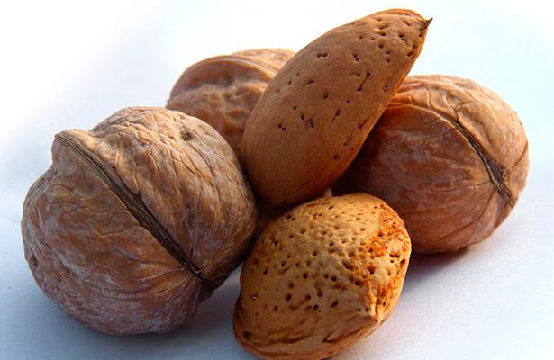 nueces y almendras los frutos secos del otoño que reinan en