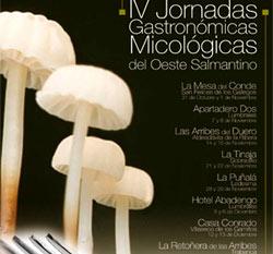 Cartel promocional de las Jornadas micológicas del oeste salmantino