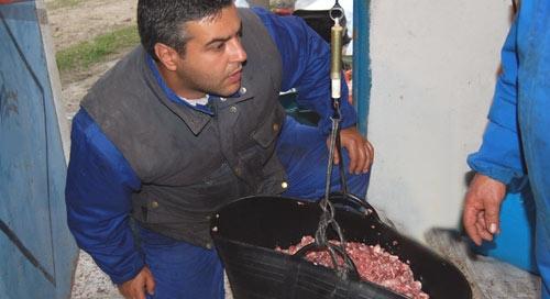Pesando la carne para calcular las porciones de ingredientes del embutido