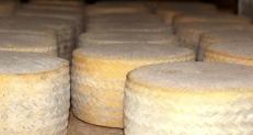 El queso de las Arribes